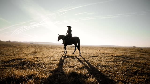 Young cowgirl at brown horse in slow motion outdoors Young cowgirl at brown horse in slow motion outdoors. Beautiful woman riding a horse in background sunrise in field wild west stock videos & royalty-free footage