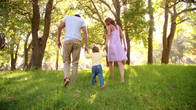 Young family holding hands and wallking in a sunny park video