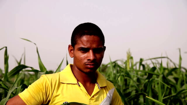 Young farmer standing in the green field video