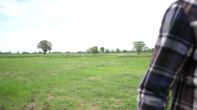 Young farmer walking in a farmland - video