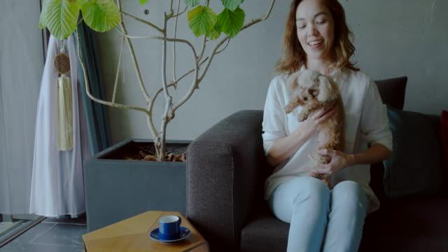 vidéos et rushes de jeune femme à la maison - seulement des japonais