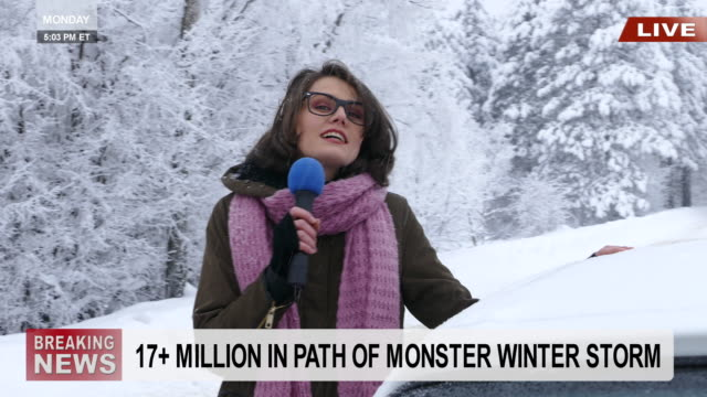 Young female reporter presenting snow situation in mountains Female TV reporter taling about a snow situation in mountains. Wears warm clothes, with eyeglasses. Looking at camera. Snow trees on background. meteorology stock videos & royalty-free footage