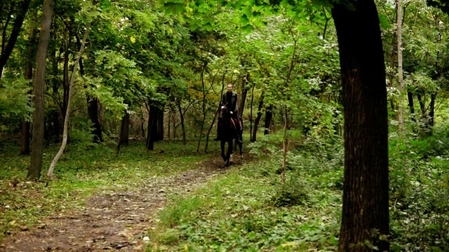 Young female rider on the horse on a shady forest gallop. Allure gallop. Horseback riding on a sunny day. Horse riding in the summer forest