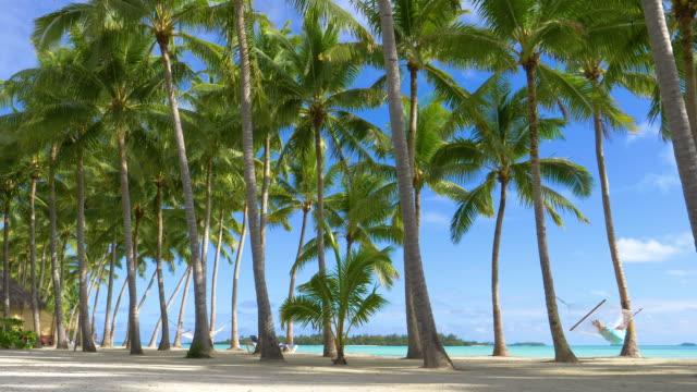 コピー スペース: 若い女性観光客リラックスした海沿いに砂浜のビーチ。 - ヤシの木点の映像素材/bロール