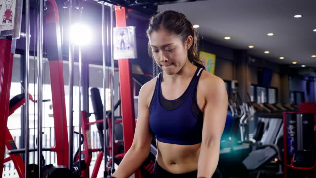 Young fitness woman doing biceps curl with E-Z bar at the gym, fitness training concept