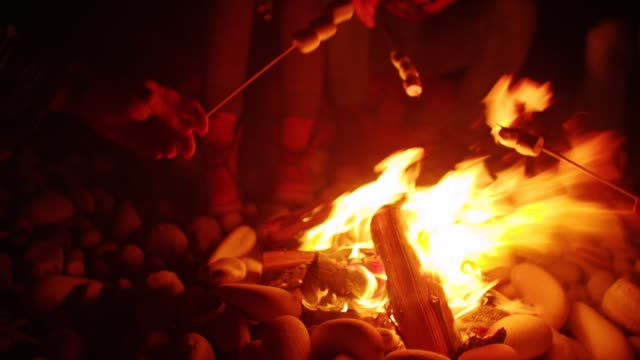 Young friends sitting around fire, roasting marshmallows on the beach - video