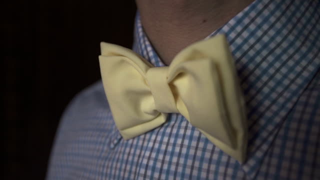 Young gentleman in plaid shirt and yellow bow tie video