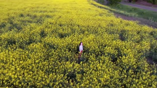 ung flicka i ett fält bland rapsfrön blommor. fågel öga. - endast flickor bildbanksvideor och videomaterial från bakom kulisserna