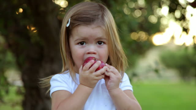 Young girl in orchard take bite of apple