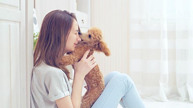 vidéos et rushes de jeune fille se repose avec un chien sur le plancher à la maison. - femme seule s'enlacer