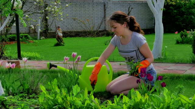 Young girl planting flowers in the garden Young girl planting flowers in the garden, smiling and showing thumbs up to camera. Female gardener with flowers, watering can and gardening tools. tulip stock videos & royalty-free footage