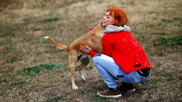 Young girl playing with dogs Young caucasian cute woman playing with dogs outdoor. dyed red hair stock videos & royalty-free footage