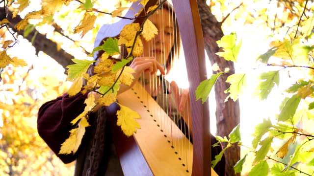 A young girl plays the harp. She sits under a tree in the autumn Park.