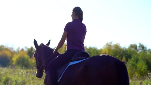 vídeos de stock, filmes e b-roll de rapariga que monta uma equitação de cavalo - cavalgar