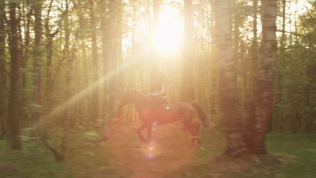 Young Girl Riding Horse in Forest video