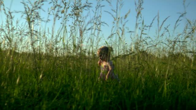 giovane ragazza corre in erba a sinistra - nastro per capelli video stock e b–roll