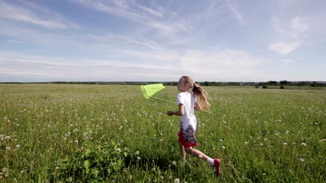 Young girl running with butterfly net funny girl are playing in field. butterfly net catch butterflies,camera is stabilized on  steadicam butterfly insect stock videos & royalty-free footage
