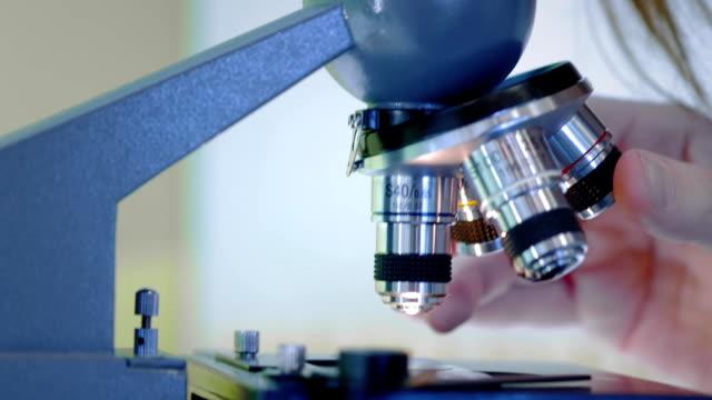 vídeos y material grabado en eventos de stock de una joven científica mirando a través de un microscopio. estudia las muestras. un joven científico lleva a cabo investigaciones científicas. está investigando un virus, buscando una cura para una vacuna epidémica - investigación científica