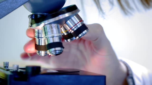 young girl scientist looking through a microscope. she studies the samples. a young scientist conducts scientific research. she is researching a virus, looking for a cure for an epidemic vaccine - science research stock videos & royalty-free footage