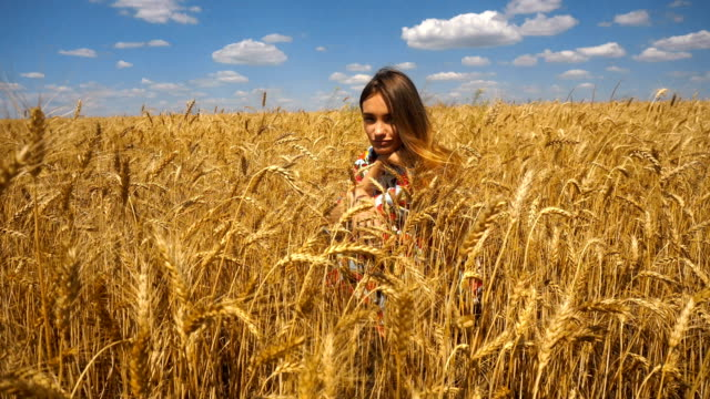 young girl sits in a wheat field and looks into the camera video