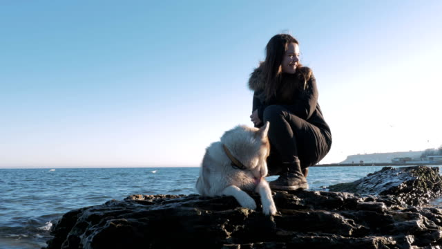 young girl sitting on a rock with siberian husky near the sea - cane husky video stock e b–roll