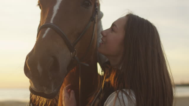 Young Girl Stroking and Hugging a Horse video