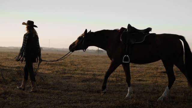 stockvideo's en b-roll-footage met jong meisje neemt lopen haar donkere mooi paard door de teugels op de zonsopgang. - lood