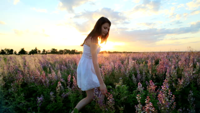Young Girl Walking In Field of Lavender At Sunset video