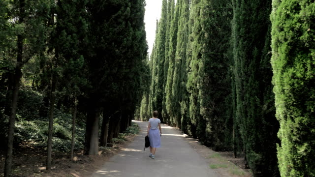 young girl walks in cypress alley in tbilisi botanical park - georgia - lingua russa video stock e b–roll