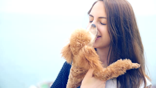 Young girl with her dog in the outdoor . video