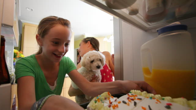 Young girls and pet dog steal cake from refrigerator video