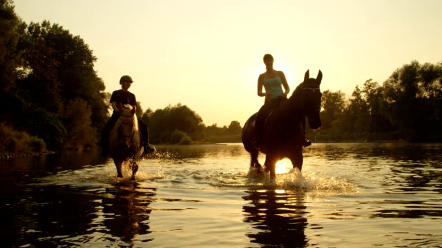 CLOSE UP: Young girls horseback riding by overgrown riverbank at golden sunrise SLOW MOTION CLOSE UP DOF: Two riders riding horses and walking in shallow water at magical golden sunset along overgrown riverbank. Palomino and dark brown horse on a ride in river at beautiful sunrise mare stock videos & royalty-free footage