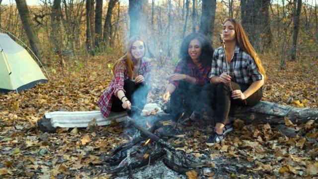 vídeos de stock, filmes e b-roll de jovens assando marshmallows sobre fogo em acampamento - amizade feminina