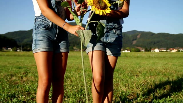 Young girls with sunflowers video