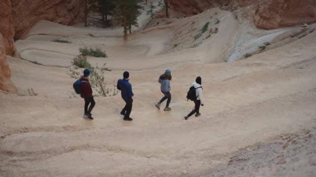 vídeos y material grabado en eventos de stock de 4k uhd: grupo de jóvenes de los adultos ir de excursión abajo de zigzag - parque nacional