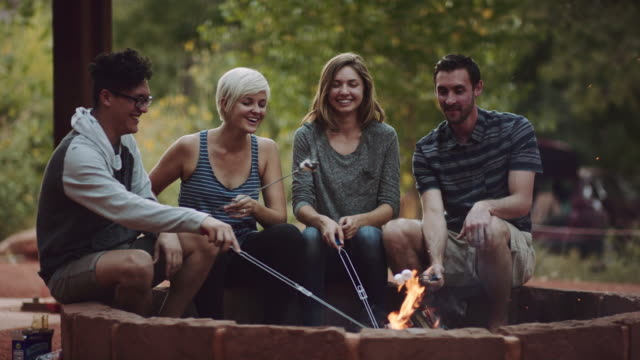 4k uhd: young group of adults roasting marshmallows - camping stock videos & royalty-free footage