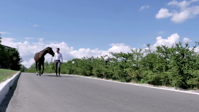 Young guy walking with horse along the road video