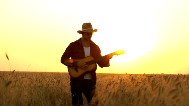 young guy walks the golden wheat field in the rays of the sunset and plays the guitar.