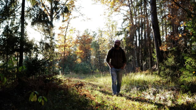 a young guy walks through the woods and enjoys life - viaggiare zaino in spalla video stock e b–roll