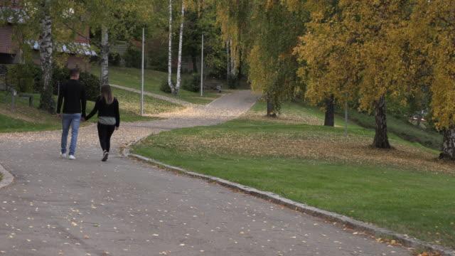 genç adam bir kızla el ele parkta, yürümek - i̇nsan sırtı stok videoları ve detay görüntü çekimi
