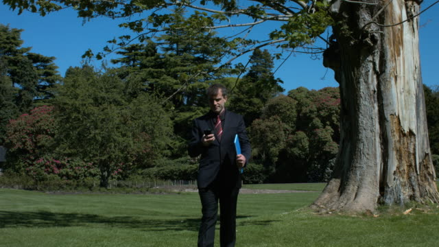 A Young Handsome Businessman Walking In A Park video
