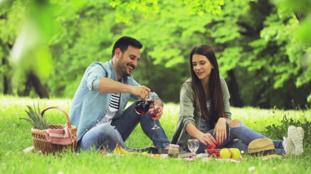 young happy couple drinking red wine on a picnic at the park. - picnic video stock e b–roll