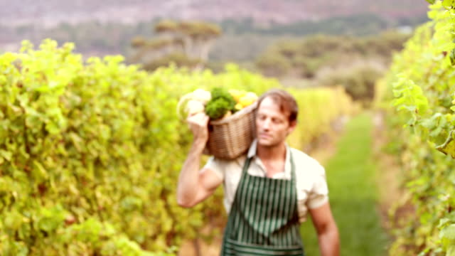 Young happy farmer holding a basket of vegetables video