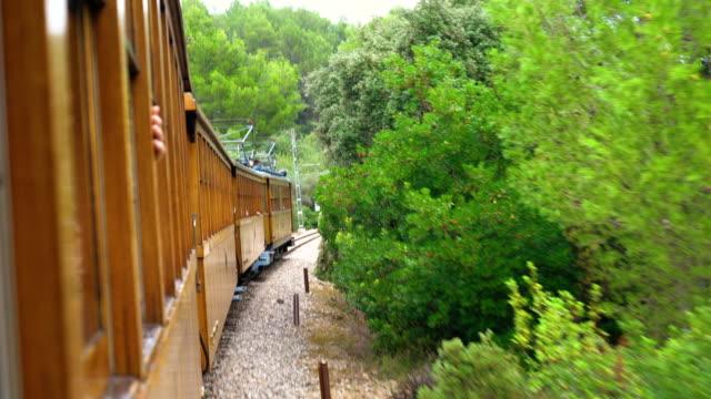 Froh, dass Frau genießt Young fahren mit alten hölzernen Zug durch die schöne Landschaft Natur – Video