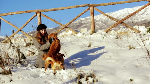 young happy woman playing with snow balls and two dogs in the snow: winter time video