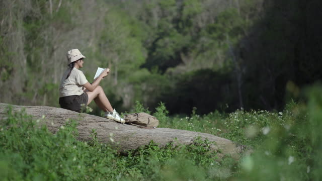 Young happy woman traveler sitting on Timber, reading book and relaxing outside video