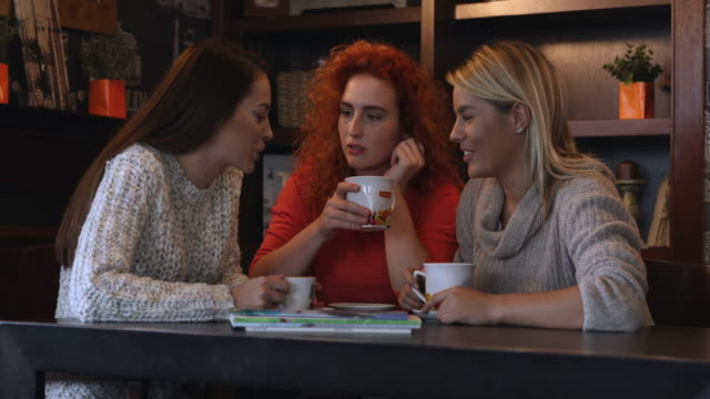 Young happy women gossiping and enjoying in conversation while relaxing in a cafe. video