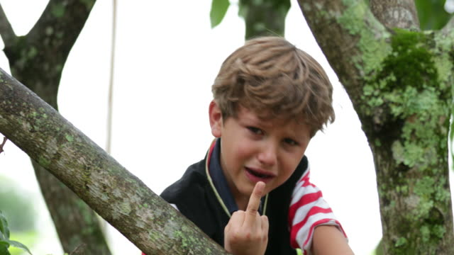 vídeos de stock e filmes b-roll de young infant boy gives the middle finger while in tears. infant boy gives the middle finger to camera in 4k - perigo
