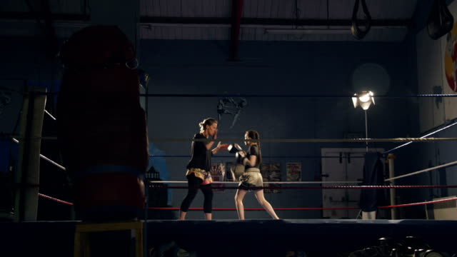 Young Kickboxer Training video