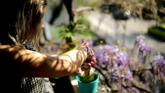 young lady on her terrace works with plants - terrazza video stock e b–roll